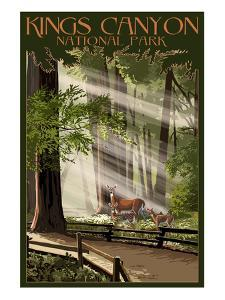 Kings Canyon National Park, California - Deer and Fawns by Lantern Press