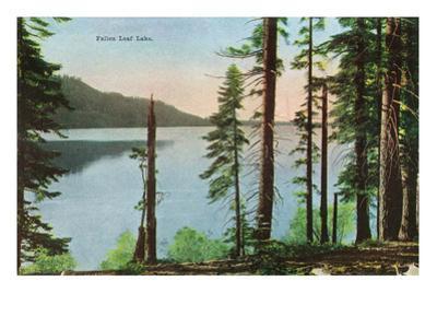 Lake Tahoe, California - View of Fallen Leaf Lake