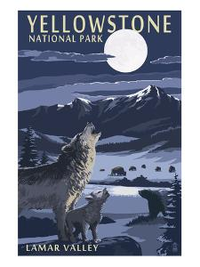 Lamar Valley Scene, Yellowstone National Park by Lantern Press