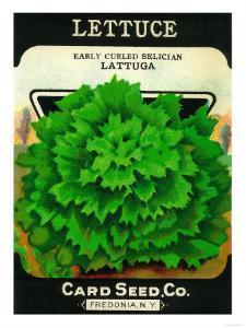 Lettuce Seed Packet by Lantern Press