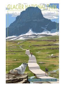 Logan Pass - Glacier National Park, Montana by Lantern Press
