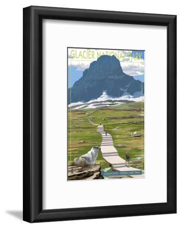 Logan Pass - Glacier National Park, Montana