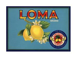 Loma Brand - Santa Paula, California - Citrus Crate Label by Lantern Press