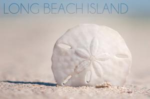 Long Beach Island - Sand Dollar by Lantern Press