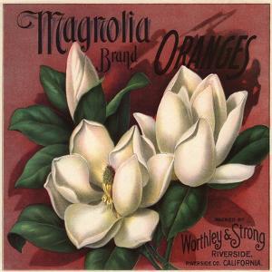 Magnolia Brand - Riverside, California - Citrus Crate Label by Lantern Press