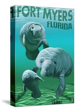 Manatees - Fort Myers, Florida