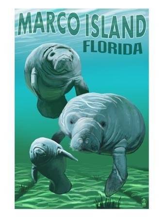 Marco Island, Florida - Manatees by Lantern Press