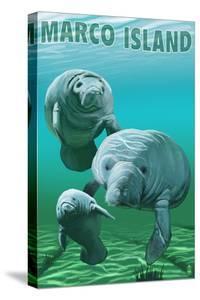 Marco Island - Manatees by Lantern Press