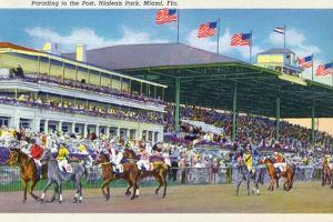 Miami, Florida - Hialeah Park; Parading to the Post Scene by Lantern Press