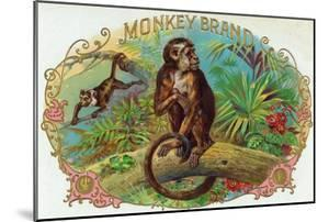 Monkey Brand Cigar Box Label by Lantern Press