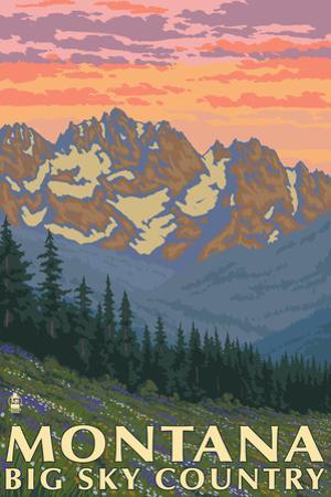 Montana - Big Sky Country - Spring Flowers, c.2008 by Lantern Press