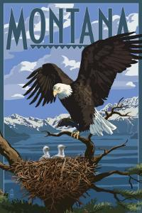 Montana - Eagle Perched with Chicks by Lantern Press