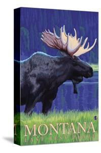 Montana, Last Best Place, Moose at Night by Lantern Press