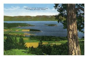 Montana - Panoramic View of Flathead Lake in the Flathead National Forest, c.1922 by Lantern Press