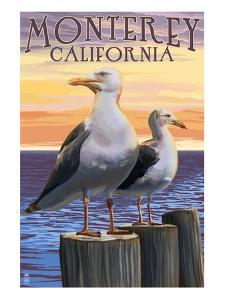 Monterey, California - Sea Gulls by Lantern Press