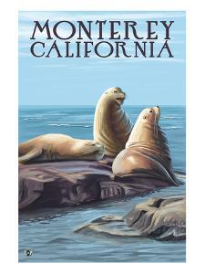 Monterey, California - Sea Lions by Lantern Press