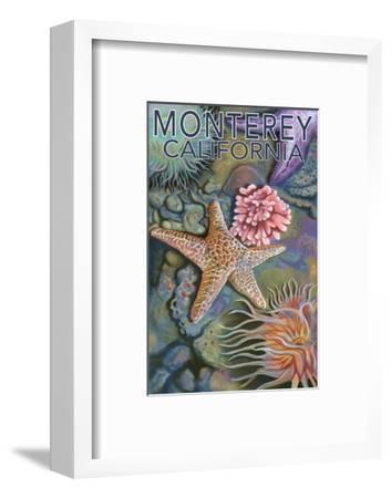 Monterey, California - Tidepool