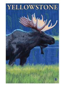 Moose at Night, Yellowstone National Park by Lantern Press