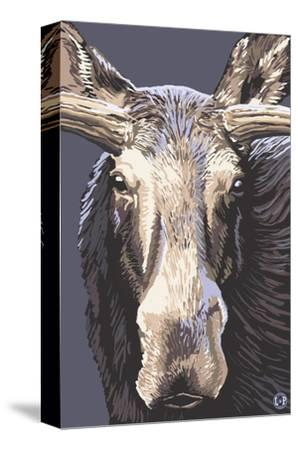 Moose Up Close by Lantern Press