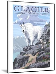 Mountain Goat and Kid - Glacier National Park, Montana by Lantern Press