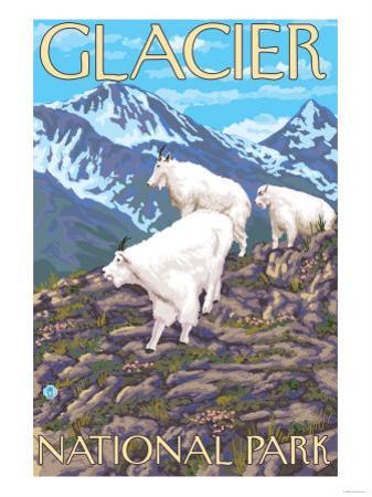 Mountain Goats Scene, Glacier National Park, Montana by Lantern Press