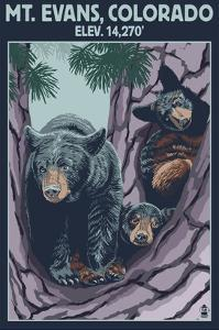 Mt. Evans, Colorado Elv. 14,270 - Black Bear Family by Lantern Press