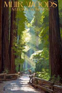 Muir Woods National Monument, California - Pathway by Lantern Press