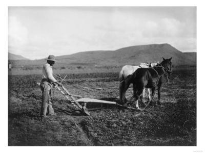 Native American Plowing His Field Photograph - Sacaton Indian Reservation, AZ