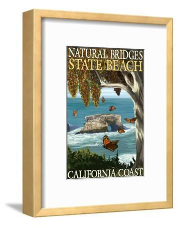 Natural Bridges State Beach, California Coast