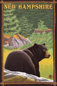 New Hampshire - Black Bear in Forest by Lantern Press