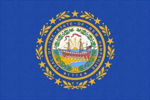 New Hampshire State Flag by Lantern Press