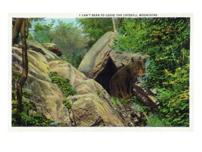New York - Bear in the Catskill Mountains by Lantern Press