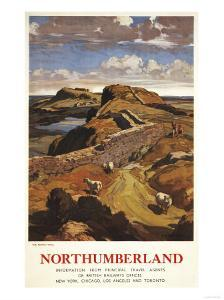 Northumberland, England - Hadrian's Wall and Sheep British Rail Poster by Lantern Press