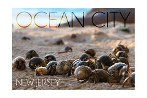Ocean City, New Jersey - Group of Hermit Crabs by Lantern Press