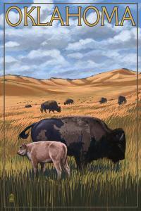 Oklahoma - Buffalo and Calf by Lantern Press