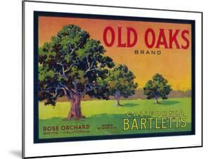Old Oaks Pear Crate Label - Bryte, CA by Lantern Press