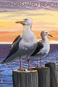 Old Orchard Beach, Maine - Seagull by Lantern Press