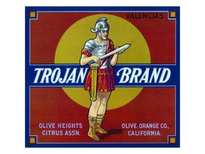Upland Vigilant Tiger Orange Citrus Fruit Crate Label Art Print