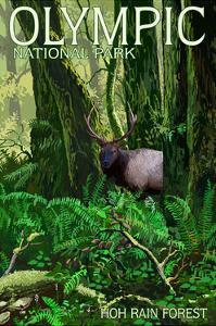Olympic National Park, Washington - Hoh Rain Forest by Lantern Press