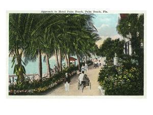 Palm Beach, Florida - Approach to Hotel Palm Beach Scene by Lantern Press
