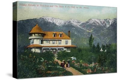 Pasadena, California - Picking Flowers Near Mount Wilson