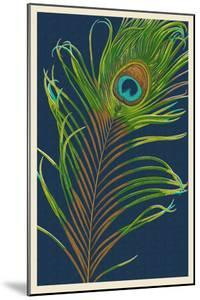 Peacock Feather by Lantern Press