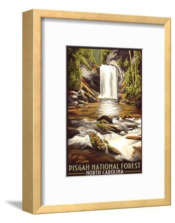 Pisgah National Forest - North Carolina