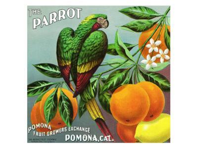 Pomona, California, The Parrot Brand Citrus Label