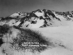 Port Aransas, Texas - Sand Dunes by Lantern Press