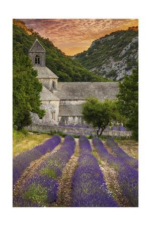 Provence, France - Lavender Fields