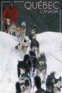 Quebec, Canada - Dogsled Scene by Lantern Press