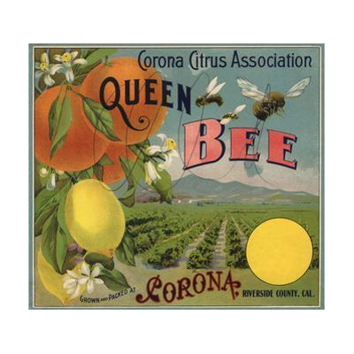 Queen Bee Brand - Corona, California - Citrus Crate Label by Lantern Press
