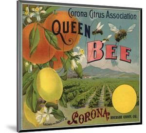 Queen Bee Brand - Corona, California - Citrus Crate Label by Lantern Press