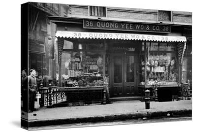 Quong Yee Wo & Co. Storefront in Chinatown NYC Photo - New York, NY
